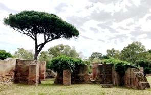 Altra veduta dei magazzini di Traiano