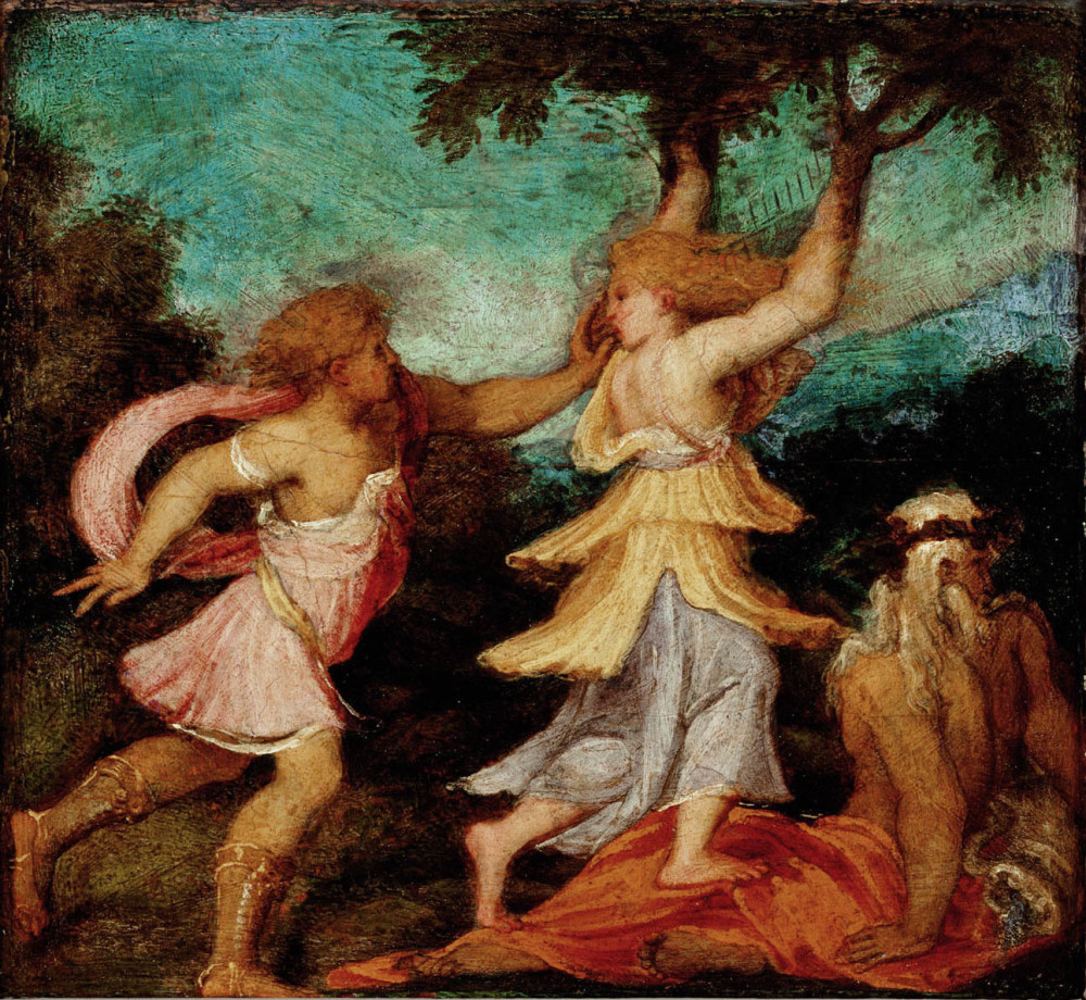 Apollo e Dafne di Andrea Meldolla, Gemaldgalerie, Vienna